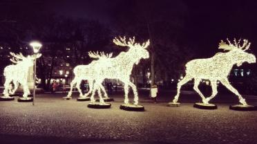 Stockholm - Christmas lights